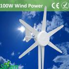 100W Wind Generator DC output 12v 24v