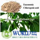 natural chlorogenic acids /natural chlorogenic acid powder / green coffe bean extract chlorogenic acid