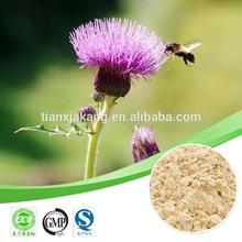 milk thistle seed extract powder /milk thistle dry extract / milk thistle extract silymarin & silybin