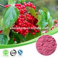 Antocianidinas extracto de mirtilo/extrato de cranberry( anthocyanidin)/natural suplemento antocianidinas