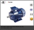 Drehstrom asynchronmotor elektro-motor tauchen
