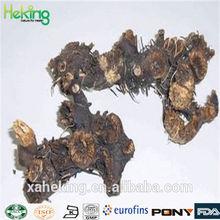 Natural High Quality Largetrifoliolious Bugbane Rhizome Extract/Cimicifuga foetida L.
