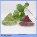 Made in acai berry semillas venta ingrediente nutricional