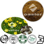 Pure Natural Cat's Claw Root Extract 5% Alkaloids HPLC