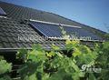 Solar de agua del sistema para piscina y el hotel y de la escuela