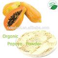 100% orgánica papaya en polvo/semillas de papaya en polvo extracto de/jugo de papaya en polvo