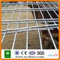 Malla de alambre soldado paneles de malla de alambre hoja( hecho en anping)