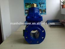 flap gate valve