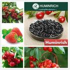 Huminrich Shenyang Black Shiny Column K2O Humus boron granular fertilizer
