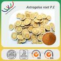 De alta calidad chino a base de hierbas de la medicina 100% puro y naturel mongholicus astrágalo extracto