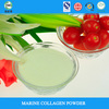 HNB collagen private label protein powder