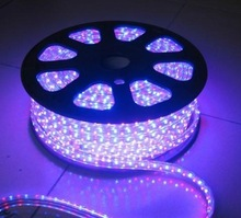 Hot Sell IP67 controller RGB led strip 220V for holiday