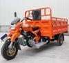 200cc 250cc 300cc cargo trike /three wheel/motor tricycle
