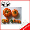 Artificial white pumpkin decoration