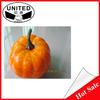 Custom artificial foam pumpkin