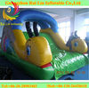 RLSD002 Snial Water Inflatable Slide for Pool/Cute and Small Inflatable Slide for Sales