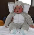 grossista bonito animal crianças roupas