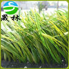 2014 the beautiful durable mini football field artificial grass