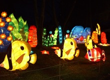 chinese lanterns for sale for chrismas holidays