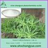 factory supply natural stevia extract