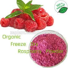 GMP 100% Pure Freeze Dried Raspberry Powder