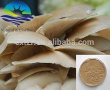 Wild Organic maitake/maitake mushroom extract/maitake extracts