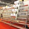Quantity assured chicken broiler poultry farm for chicken coop for agricultural equipment