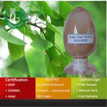 GMP Supply Ginkgo Biloba Leaf Extract /Ginkgo Biloba P.E.