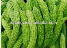 100% Momordica Charantia Extract powder Bitter Melon