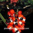 100% natrual guarana extract caffeine