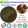 China manufacturer sales best price natural herb extracts black garlic powder