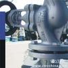 Vatac Casing Steel Bellow Sealed Globe Valve 324