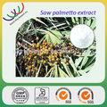 Las ventas caliente proveedor de china de las ventas de extractos de hierbas naturales 25% fattt de ácido extracto de saw palmetto serenoa repens