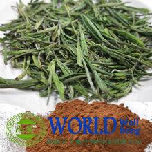 factory supply nature for medicinen natural bio green tea extract