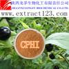 Manufacturer sales belladonna extract( hyoscyamine)