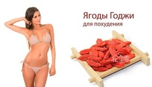 2014 Herbal supplements and active goji wolfberry extract/Goji Berry Extract wolfberry extract