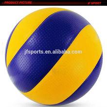 Molten Indoor Volleyball