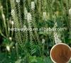 2%-8% Triterpene Glycoside Black Cohosh P.E.