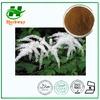 Natural plant extract Black Cohosh P.E.Triterpene glycosides 2%- 8% (HPLC)