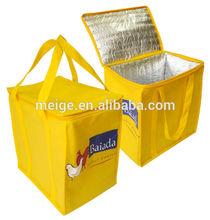 BSCI cooler bag/insulated cooler bag/solar cooler bag