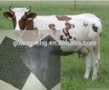 Vaca cavalo estável esteira de borracha/borracha estável de acasalamento para venda