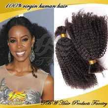Cheap Brazilian Virgin Afro Kinky Human Hair Bulk