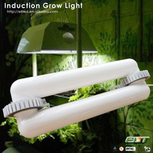 high lumen greenhouse lamp induction and blue sea led grow light