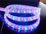 small battery operated led light china supplier high BrightnessRGB LED Rice Rope Light waterproof