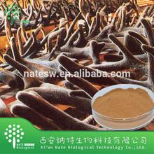 Top quality and hot sell Deer Antler Powder / Deer Antler Velvet Pure Powder