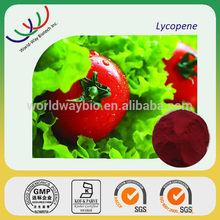 China manufacturer sales natural herbs lycopene tomato powder