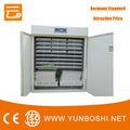 termostato del microordenador para incubadora de huevos para la venta