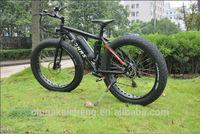 old model bike fat bike