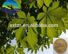 Nature Aescine Or Escin 20%//40%//98% Horse Chestnut Extract