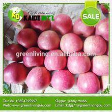 Green Food Qinguan Apple/Juicy Taste/High Quatity